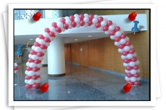 Professional Balloon Decoration services