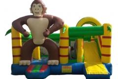 Big Monkey Standing combo 6x5x3.5M