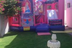 Bouncy-Castle-for-Party