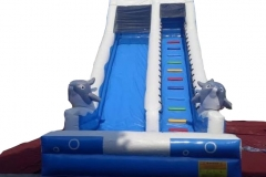 Double dolphin fish Slider 7x4.5x6M