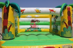 Jungle Bouncy 4x4M