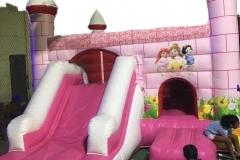Pink Princess 5x5x2M