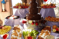 Chocolate Fountain Party